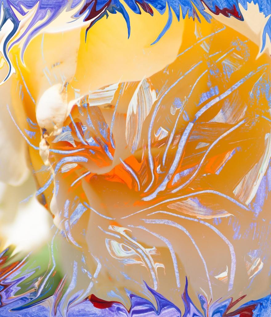 immagine astratta dai colori caldi con forma simile a fiore con pistilli con forme astratte che si sviluppano da un nucleo arancione